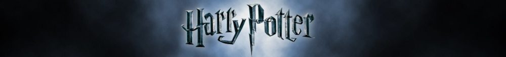 Harry-Potter-Banner-yorkshire-rose-and-jessowey-41488195-1200-170